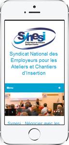 site internet Synesi version mobile