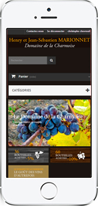 Version mobile site web Henry Marionnet