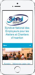site internet Synesi version mobile